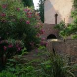 Alhambra Jardines 1